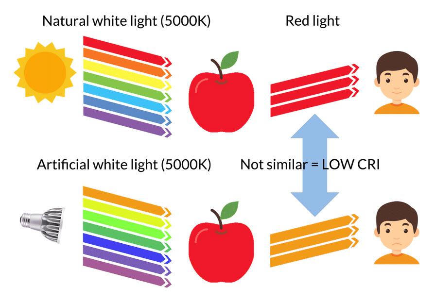 Light Explained